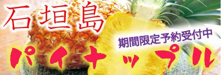 2018石垣島産完熟パイナップル